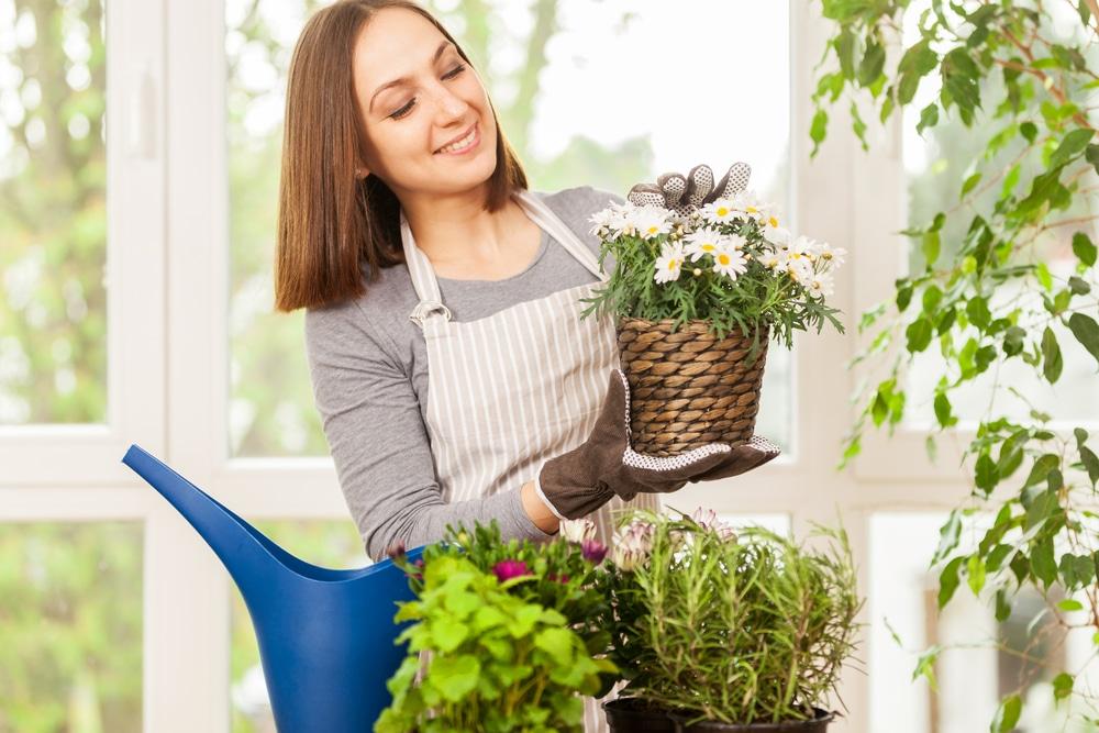 Hvordan ta vare på blomster