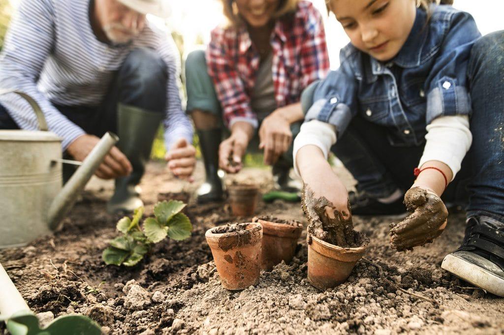 tips hagearbeid om våren